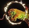Цирки в Дзержинске